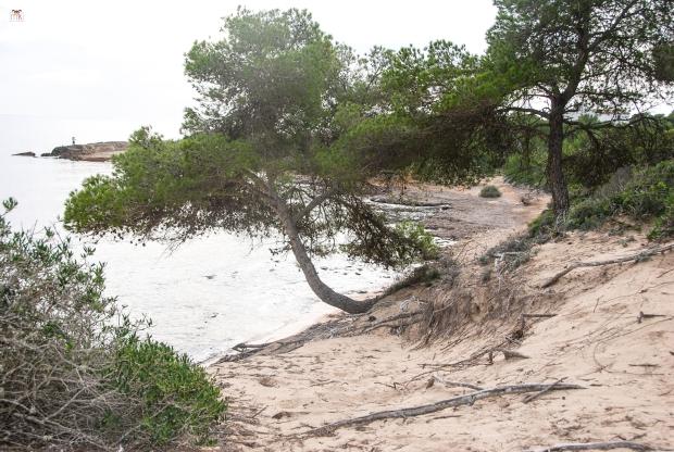 Faro de Sestanyol_03